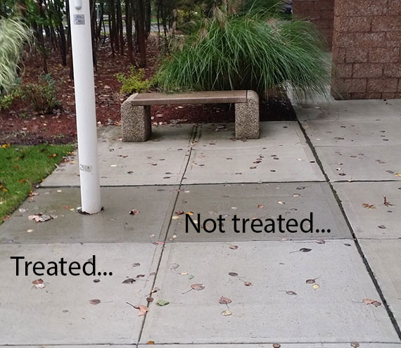 Treated and Untreated Concrete